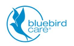 Bluebird Care – Exeter, Honiton and Exmouth